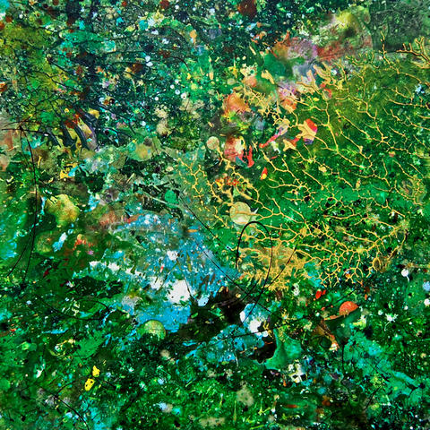 Early Summer Module #4 on display in Paul Harryn: Essence of Nature at the Allentown Art Museum Jan. 19-May 18.