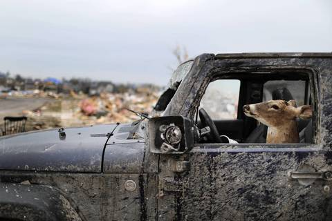 A stuffed deer head sits in the front seat of a mangled Jeep in the area hit by the Nov. 17 tornado in Washington, Illinois.
