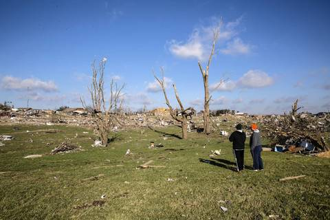 Trees are stripped of their leaves and branches in Washington, Ill.