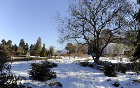 "The entrance to the ""winter walk"" at Alice Ryan's Easton gardens."