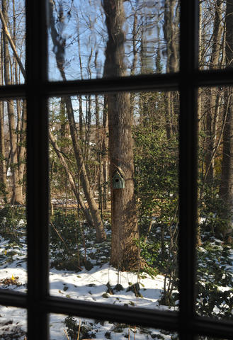 From inside, all of the windows offer pretty winter views, including this one, framing one of several bird feeders. The winter garden at Chris Killian's Annapolis home near Broad Creek has many elements of winter interest, thanks to strong structural elements and varied plantings. Pierre and Nancy
