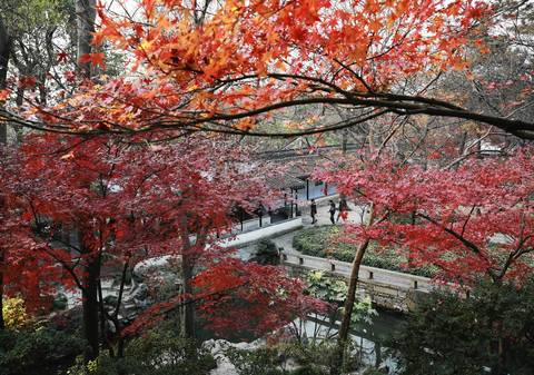 The colors change in the Humble Administrator's Garden in Suzhou.