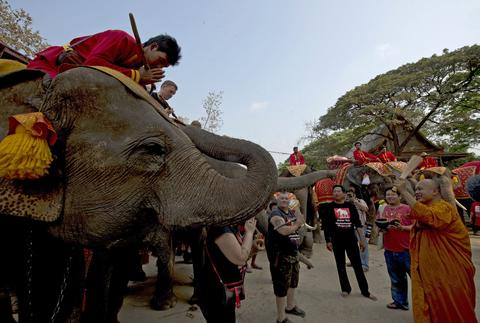 "A Thai Buddhist monk (R) sprinkles holy water on elephants and their mahouts (L) as they take part in the elephant banquet to mark ""National Elephant Day"" in Ayutthaya province on March 13, 2014."
