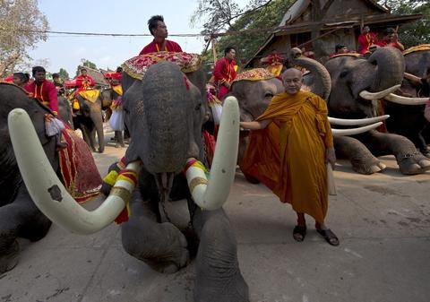 "Thai mahouts pray while sitting on elephants as part of an elephant banquet to mark ""National Elephant Day"" in Ayutthaya province on March 13, 2014."
