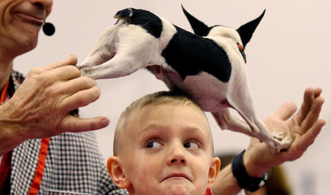 Henry Baum wears a dog on his head during the Johnny Peers' Muttvile Comix show at the Pets Expo Saturday.