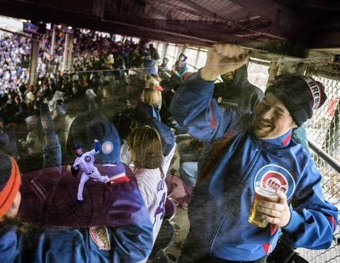"""""""Cubs Celebration"""""""