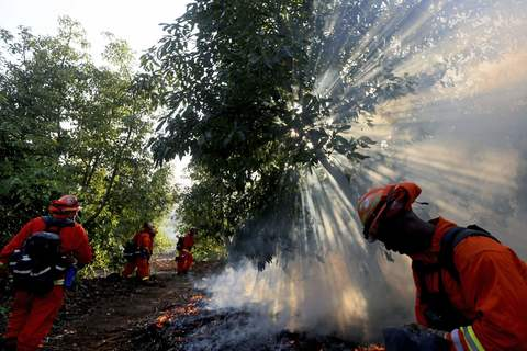 A prison crew battles a fire in an avocado grove outside Fallbrook, California May 14, 2014.