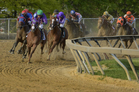 California Chrome leads the field into the fourth turn of the 139th Preakness at Pimlico Race Course.