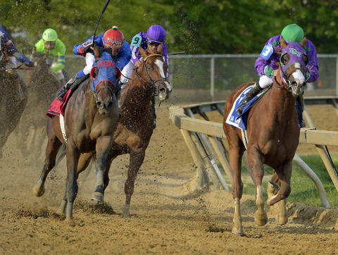California Chrome leads the field out of the fourth turn of the 139th Preakness at Pimlico Race Course.