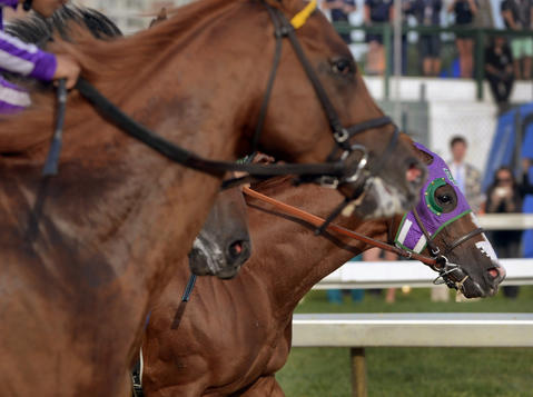 California Chrome, right, takes the early lead in the 139th Preakness at Pimlico Race Course.