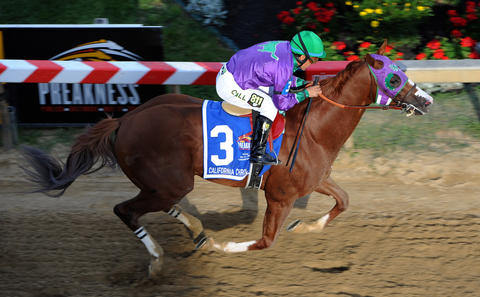 California Chrome, ridden by Victor Espinoza, wins the 139th Preakness at Pimlico Race Course.