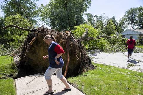 Nicole and Ken Bledsoe walk to their house past a large tree toppled during last night's storms in Midlothian.