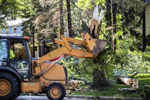 A village crew uses heavy equipment to remove downed trees along Flossmoor Road.