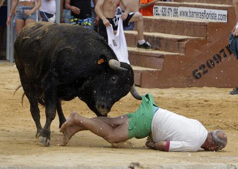 "A reveller gets gored by a bull during the ""Bous a la Mar"" festival in the eastern Spanish coastal town of Denia July 7, 2014."