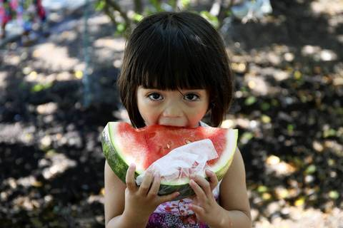 Ceci Widd, 3, a triplet from Chicago, eats a giant slice of watermelon from Mariano's at the Taste of Chicago.