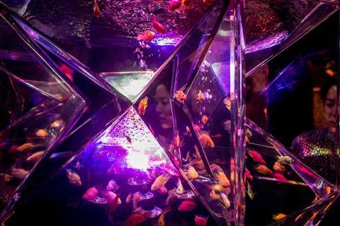 "People view Kingyo (goldfish) on display at the ""Eco Edo Nihonbashi Art Aquarium 2014"" exhibition at the Nihonbashi Mitsui Hall on July 15, 2014 in Tokyo, Japan."