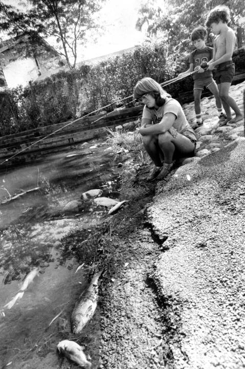 July 30, 1982: Diane Bates stares at some of the 5,000 dead fish near the Lakeside Apartments in Lisle while John Kelly, 7, and Ted Knight, 6, put out their fishing rods to see if any fish are still alive. Jack Barnett, an Illinois Environmental Protection Agency specialist, speculated that heavy rains may have washed weed-killers or other lawn chemicals into the lake, or there may have been a chemical spill from a passing truck. He said tests ruled out a simple drop in the lake's oxygen level.