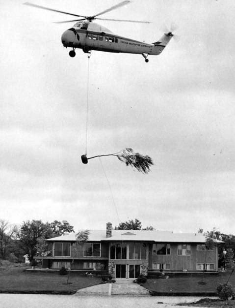 Oct. 5, 1965: A helicopter transports a weeping willow to its new home at Lake Eleanor, a Deerfield housing development.