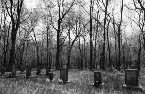 June 8, 1996: A small cemetery where many of the original property owners, members of the Reed family, were buried in the 1800s near the site of the Joliet Arsenal.