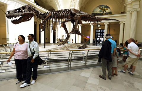 In 2000 Sue, the T.rex was unveiled at the Field Museum.