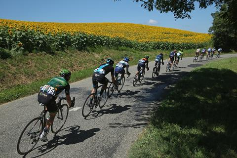 2014, July 22 - GOUSES, FRANCE - The breakaway passes a sunflower field during the sixteenth stage of the 2014 Tour de France, a 238km stage between Carcassonne and Bagneres-de-Luchon, on July 22, 2014 in Gouses, France.