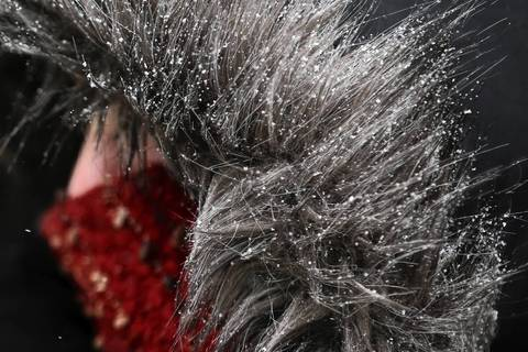 Snowflakes collect in the fur-lined hood of a woman's coat as she waits to cross the street in the Loop after an overnight snow storm covered the city.