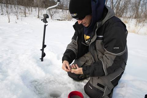Mike McNett of Lombard, captain of the USA Ice Team, shows a small bluegill he caught ice fishing on a pond at Westmore Woods in Lombard.
