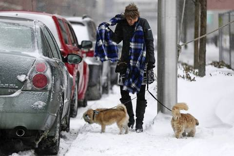 A woman walks her dogs on West Illinois Street in Chicago after an overnight snow storm covered the city.