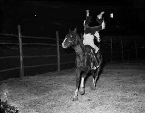 Claire Thompson of Stringtown, Texas, does a trick during Chicago's World Championship Rodeo held at the Chicago Stadium in Oct. 1937. Thompson won the Cowgirls' Bronco Riding competition.