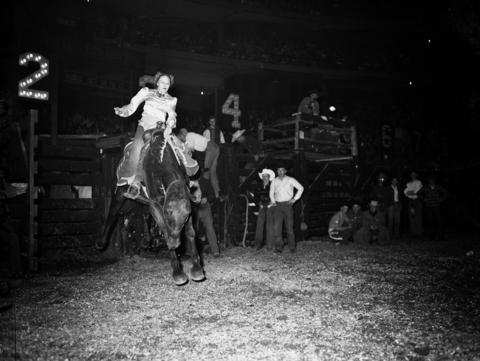Mary Parks of Colorado competes in the saddle bronc riding contest during Chicago's World Championship Rodeo held at the Chicago Stadium in Oct. 1946.