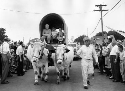 July 19, 1959: The First National Bank of Mundelein's float in the Jubilee parade in 1959, featuring oxen from Hawthorne-Mellody Farms.