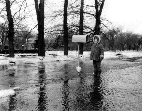 Feb. 4, 1971: Just to get the the mailbox, 4-year-old Gina Hebbard must slush across creek waters that engulf her family's front yard.