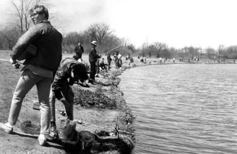 April 11, 1968: Des Plaines anglers are trying their best to catch trout recently stocked in the lake at Belleau Woods forest preserve.