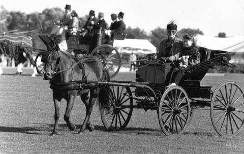 Sept. 30, 1990: Horse-drawn carriages parade around the field at the Oak Brook Polo Club.