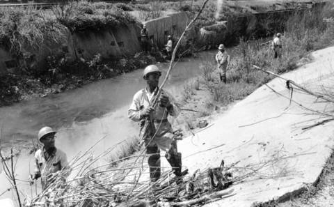 June 5, 1969: Workers clear debris and vegetation from Midlothian Creek at 147 Street and Hamlin Avenue.