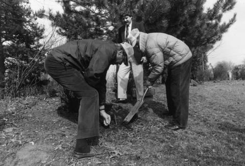 March 29, 1992: Steve Smouse of the Rotary Club watches as Lions Club members John Ruffin (left) and Chuck Cermak plant a seedling as part of a tree-planting effort in Antioch.