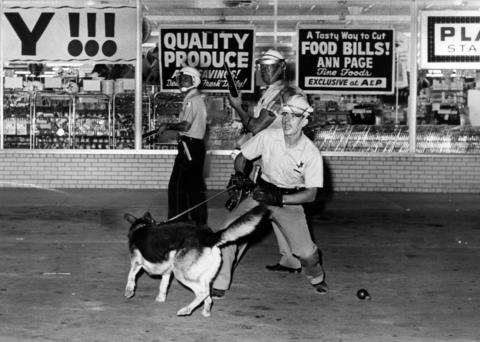 Police from Midlothian, accompanied by dogs, attempt to quell the rioting outside a supermarket in Dixmoor, Ill., on Aug. 17, 1964. Skirmishes broke out for a second night in the south suburb of Chicago.