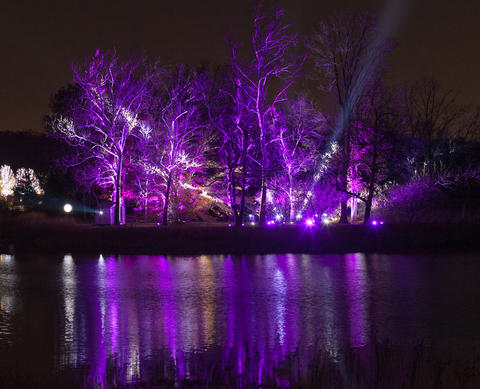 """""""Illumination"""" at the Morton Arboretum You'll never be so happy that night falls early as when you're at Morton Arboretum's dazzling and inventive winter light show, which returns after last year's triumphant debut. So much more than an impressive array of colored bulbs, the interactive """"Illumination"""" offers unique activities, like changing the light show by singing to the woods or hugging a tree. Through Jan. 3 at Morton Arboretum, 4100 Illinois Route 53, Lisle (630-725-2066, mortonarb.org). Doors open at 5 p.m. Last entry at 8:30 p.m. Lights out at 9:30 p.m. Check online for closed days. $11-$20."""
