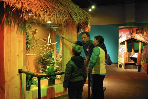 """Rainforest Adventure"" at the Nature Museum: Abandon the tundra for the Amazon.The nature museum's ""Rainforest Adventure -- transports young visitors to the world's rain forests -- with sightings of a live blue-throated macaw and a green tree python along the way. 9 a.m.-5 p.m. Monday-Friday; 10 a.m.-5 p.m. Saturday and Sunday at the Peggy Notebaert Nature Museum, 2430 N. Cannon Drive (773-755-5100, naturemuseum.org). Regular museum admission: $9 adults, $6 ages 3-12; free for under 3."
