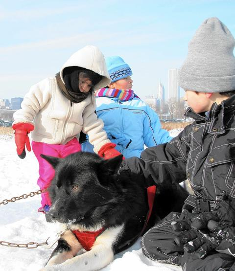 Polar Adventure Days at Northerly Island Winter in the big city doesn't get much more fun than this! The 10th annual iteration of this fun monthly event includes free hot cocoa and (weather willing) snowshoe rental, plus music from the Old Town School, crafts and storytelling. Oh, and did we mention the animal encounters? Meet birds of prey from Flint Creek Wildlife Rehabilitation, along with Siberian huskies and coyotes. Nearby parking ($3) is limited, so plan ahead. Noon-4 p.m. Jan. 24 and Feb. 21 at Northerly Island, 1521 S. Linn White Drive (312-742-7529, chicagoparkdistrict.com).