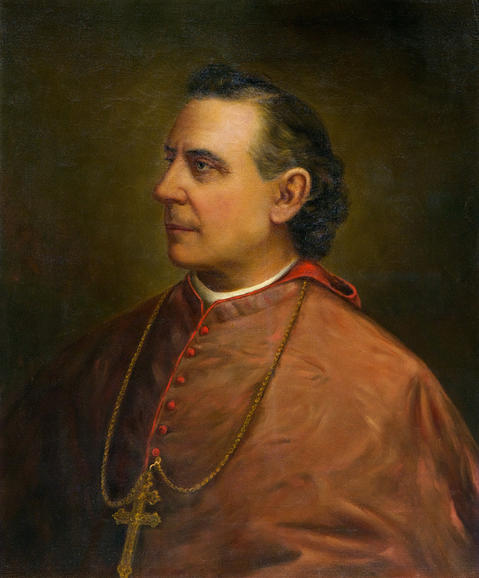 Patrick Augustine Feehan was born Aug. 29, 1829, in Spring Hill, County Tipperary, Ireland. On Sept. 10, 1880, Feehan was made Chicago's first archbishop. Feehan served the diocese until his death in 1902.