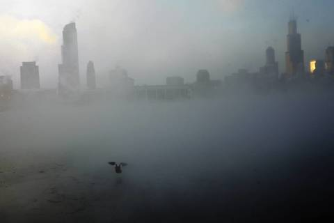A duck takes off from the waters of Lake Michigan in Chicago on Jan. 6, 2014.