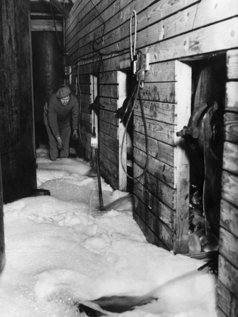 Foam from confiscated beer floods a makeshift brewery after prohibition agents opened and emptied the illegal vats of beer at 1642 S. Cicero Ave. in Cicero in 1931.