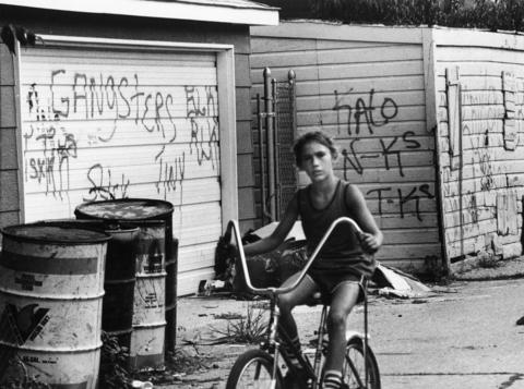 A boy rides his bike past gang graffiti in an alley in 1983 Cicero. This photo appeared as part of a Tribune exposé on Cicero's gang violence problem.