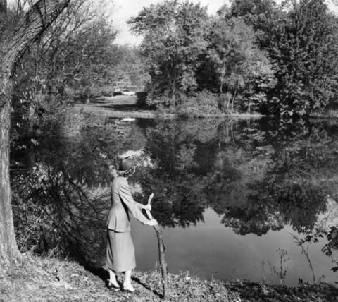October 1954: Eunice Russell looks at the reflection of trees in the water while visiting Morton Arboretum. Many people toured the grounds this time of year.