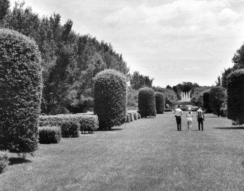 July 1962: Visitors stroll through the Morton Arboretum hedge garden, one of few formal plantings in the 1,400-acre facility.