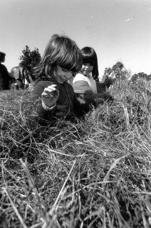 "September 1990: Ashley Bachner, left, 6, and her sister Sasha, 7, look for a needle in a haystack at Morton Arboretum during Family Fair Day. The ""needles"" were made of cardboard."