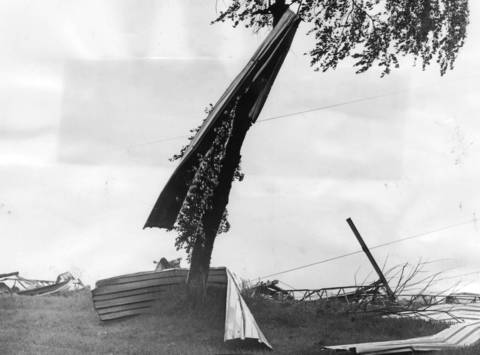 June 1966: A long strip of sheet metal, torn from a building Quentin and Illinois roads in Palatine, is draped on a tree after a tornado ripped through town.