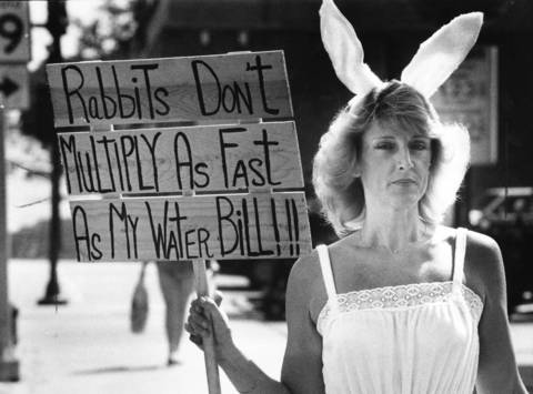 August 1983: Rosemary Patek of unicorporated Palatine Township makes her point during a protest against high water bills outside a shoe store owned by Palatine Village President Robert Guss.