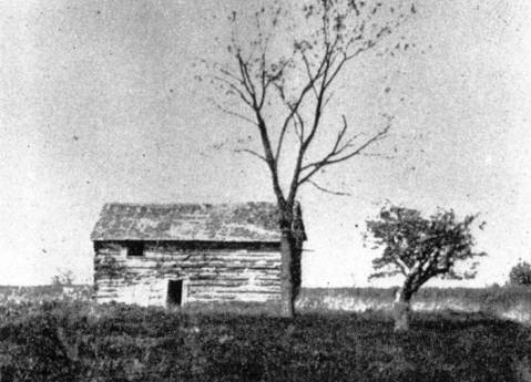 The Doyle cabin off of Green Bay Trail in Winnetka in an undated photo.